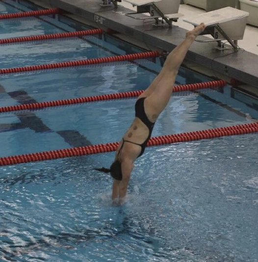 "Anna Mae King dives into the water at one of the dual meets this high school swim and dive season. At these dual meets, King was able to measure her progress. ""You have to not be afraid to smack and some things hurt obviously but you just have to do it anyway."" she said."