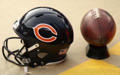Bears' 2019 season prediction
