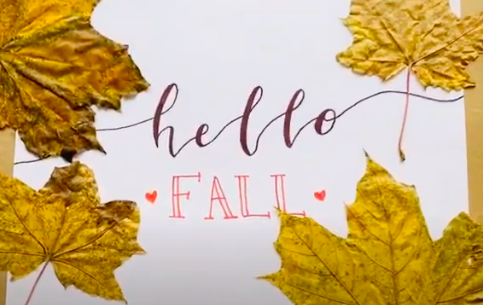 Masks on and hair down: 11 Pandemic-Friendly Fall Activities
